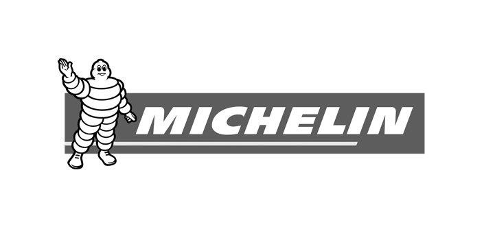 mtb_michelin